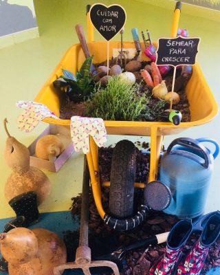 Olá Primavera, semear para crescer 💚🌼🥕🥦 #hortapedagogica #educacaoalimentar
